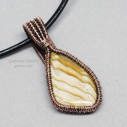 Anadara Devincta Shell Necklace